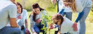 Header - Community Involvement People Planting Trees